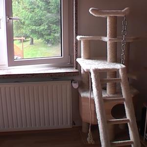 Plans pour fabriquer un arbre à chat