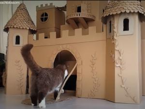 Les plus belles maisons pour chats